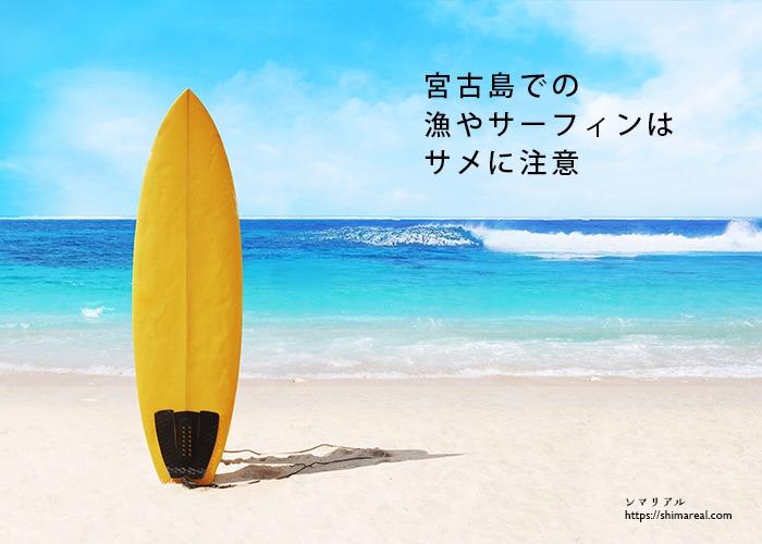 宮古島での漁やサーフィンはサメに注意