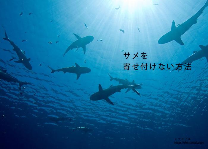 サメを寄せ付けない方法