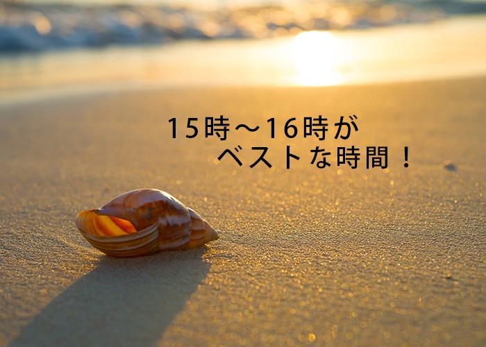 15時〜16時がベストな時期!