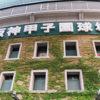 沖縄の高校野球の歴史から優勝まで。悲願の旗が海を渡った日